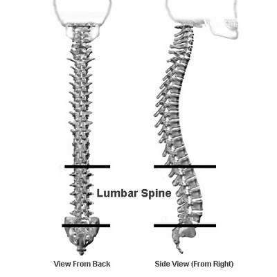 Lumbar_Spine_Kayak_Sitting